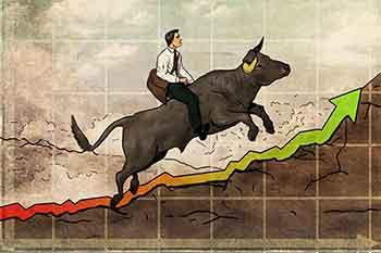 Bull Running Up
