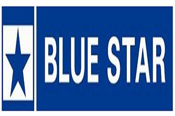 Image result for Blue Star Ltd.