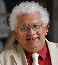 Meghnad Desai