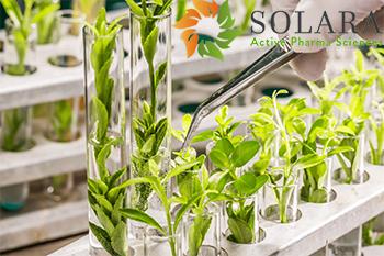 Solara Active Pharma