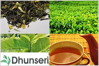 Dhunseri-Tea-and-Industries