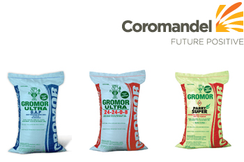 Coromandel forex & financial services ltd